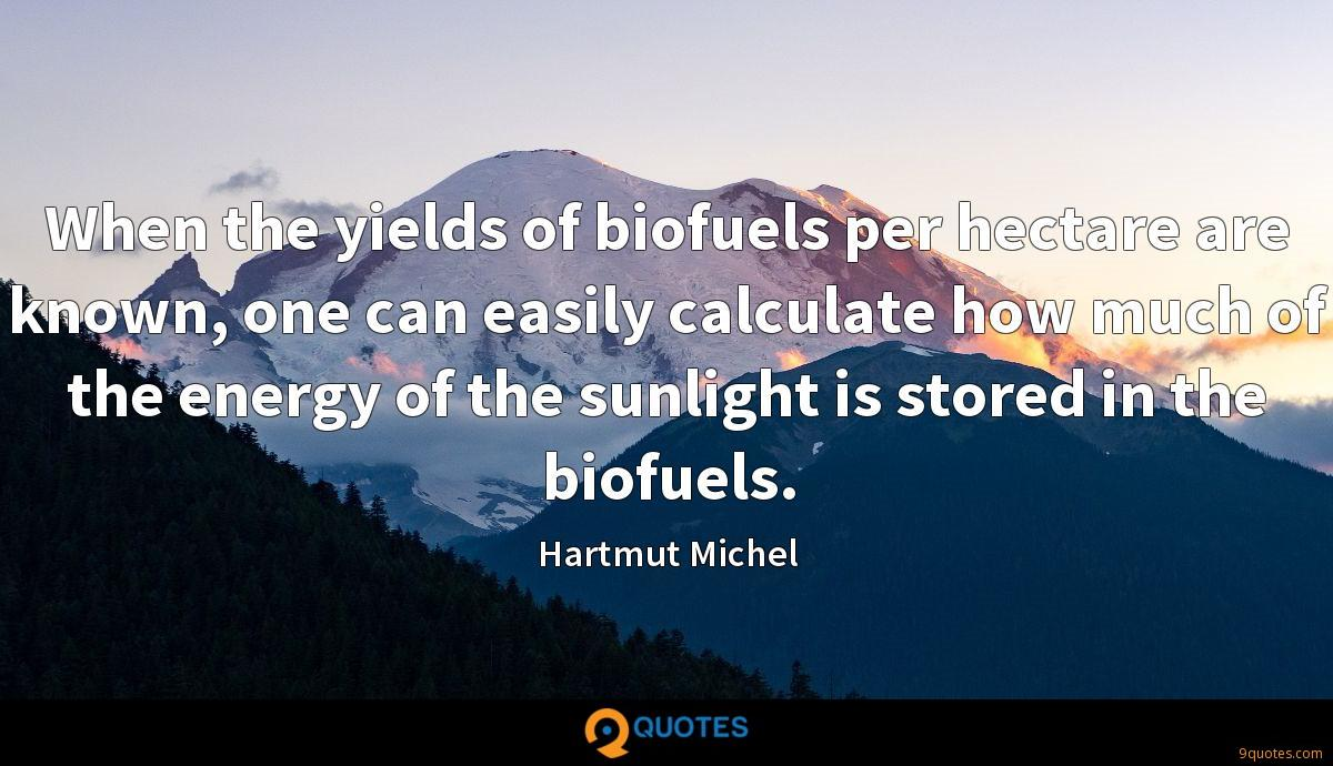 When the yields of biofuels per hectare are known, one can easily calculate how much of the energy of the sunlight is stored in the biofuels.
