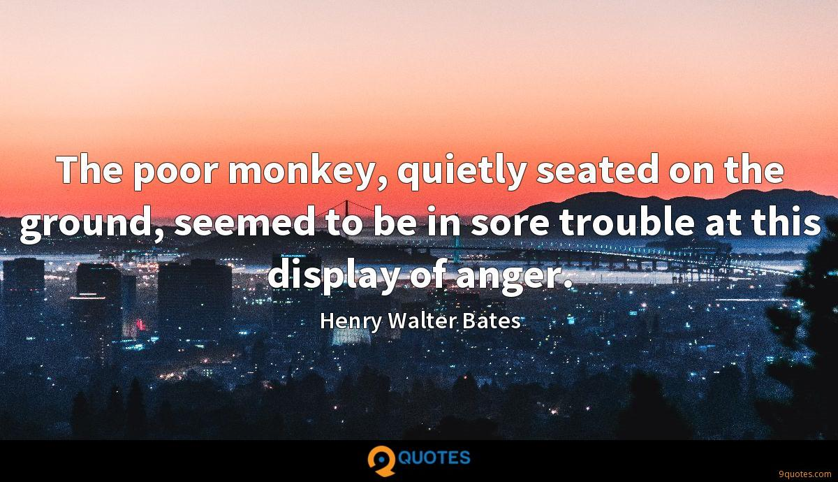 The poor monkey, quietly seated on the ground, seemed to be in sore trouble at this display of anger.