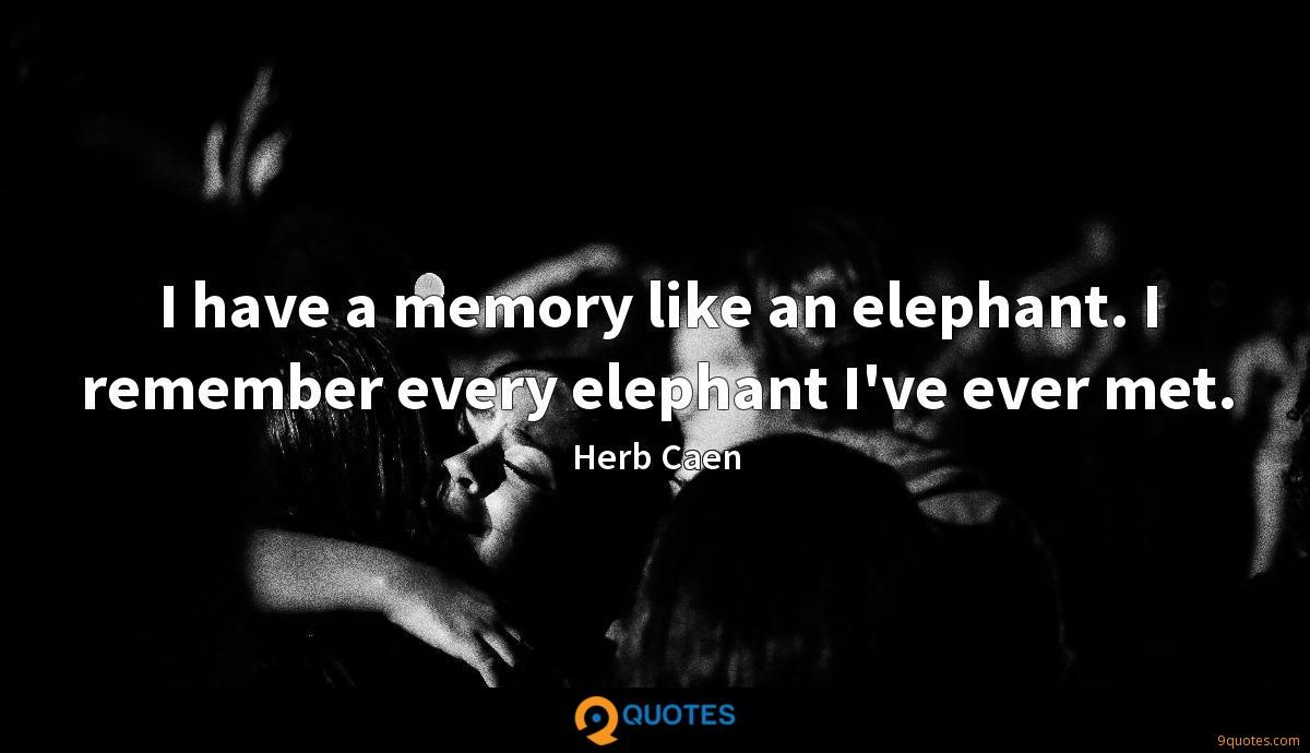 I have a memory like an elephant. I remember every elephant I've ever met.