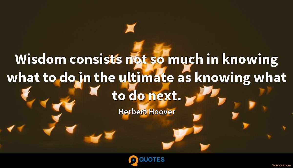 Wisdom consists not so much in knowing what to do in the ultimate as knowing what to do next.