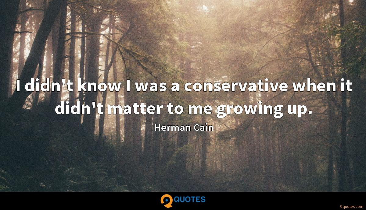 I didn't know I was a conservative when it didn't matter to me growing up.