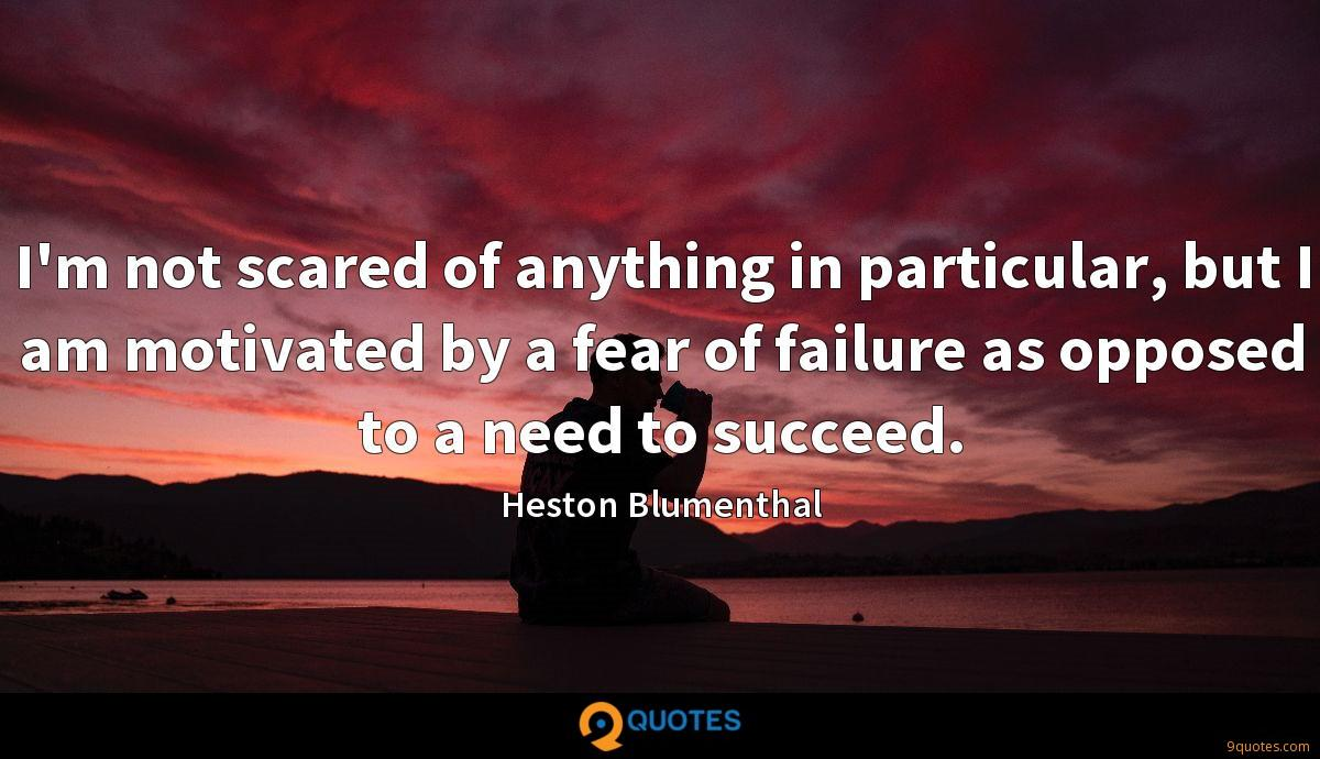 I'm not scared of anything in particular, but I am motivated by a fear of failure as opposed to a need to succeed.