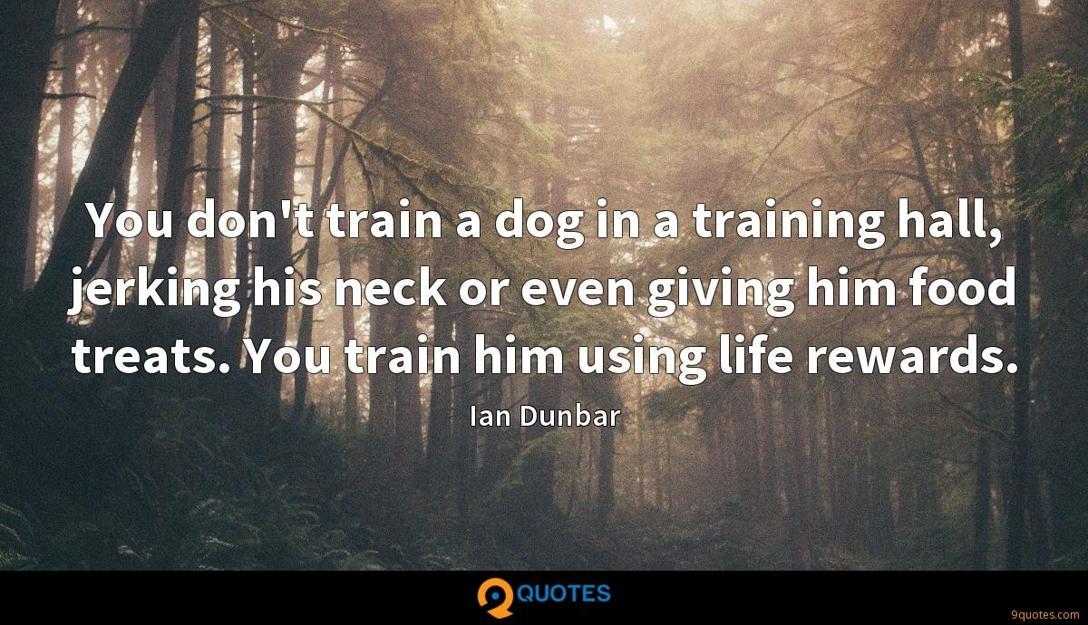 You don't train a dog in a training hall, jerking his neck or even giving him food treats. You train him using life rewards.