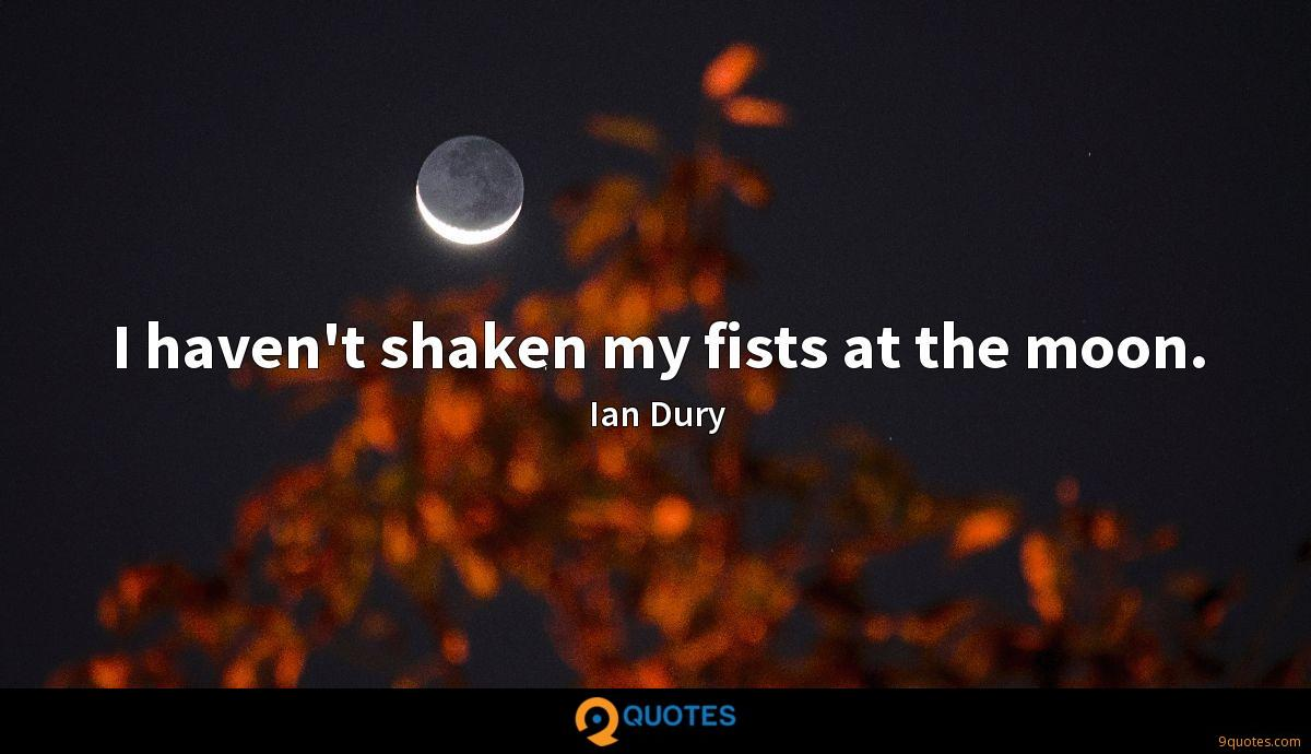 I haven't shaken my fists at the moon.