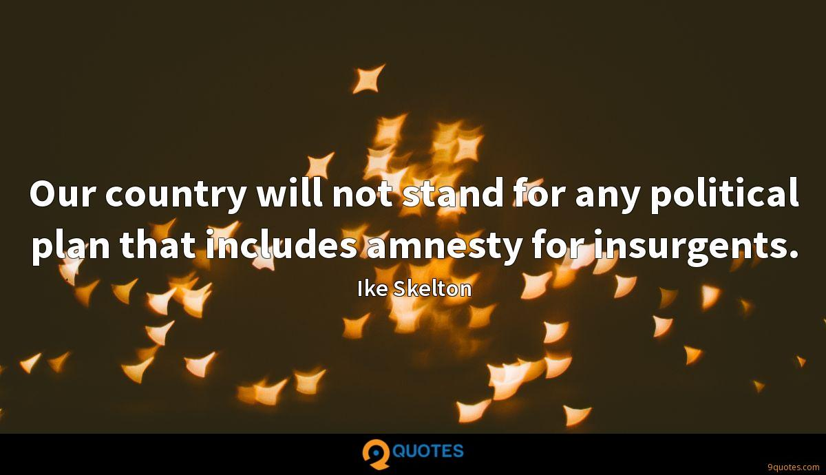 Our country will not stand for any political plan that includes amnesty for insurgents.