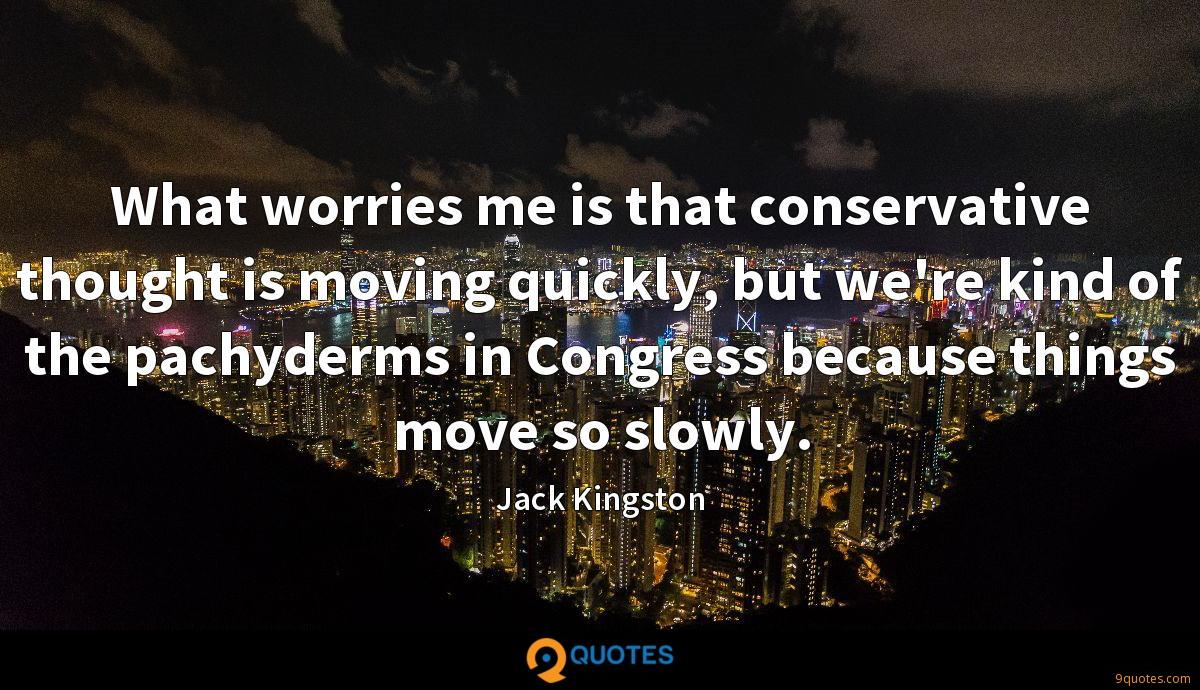 What worries me is that conservative thought is moving quickly, but we're kind of the pachyderms in Congress because things move so slowly.