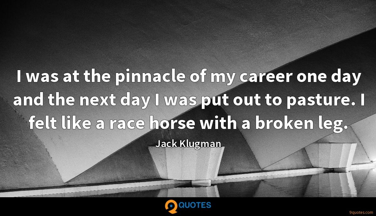 I was at the pinnacle of my career one day and the next day I was put out to pasture. I felt like a race horse with a broken leg.