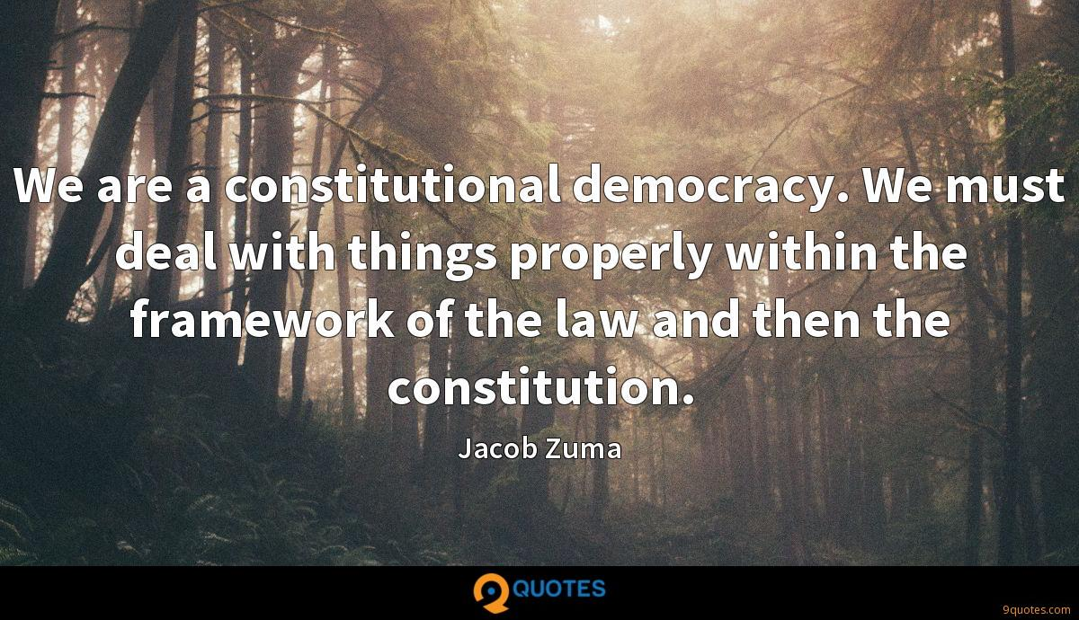 We are a constitutional democracy. We must deal with things properly within the framework of the law and then the constitution.