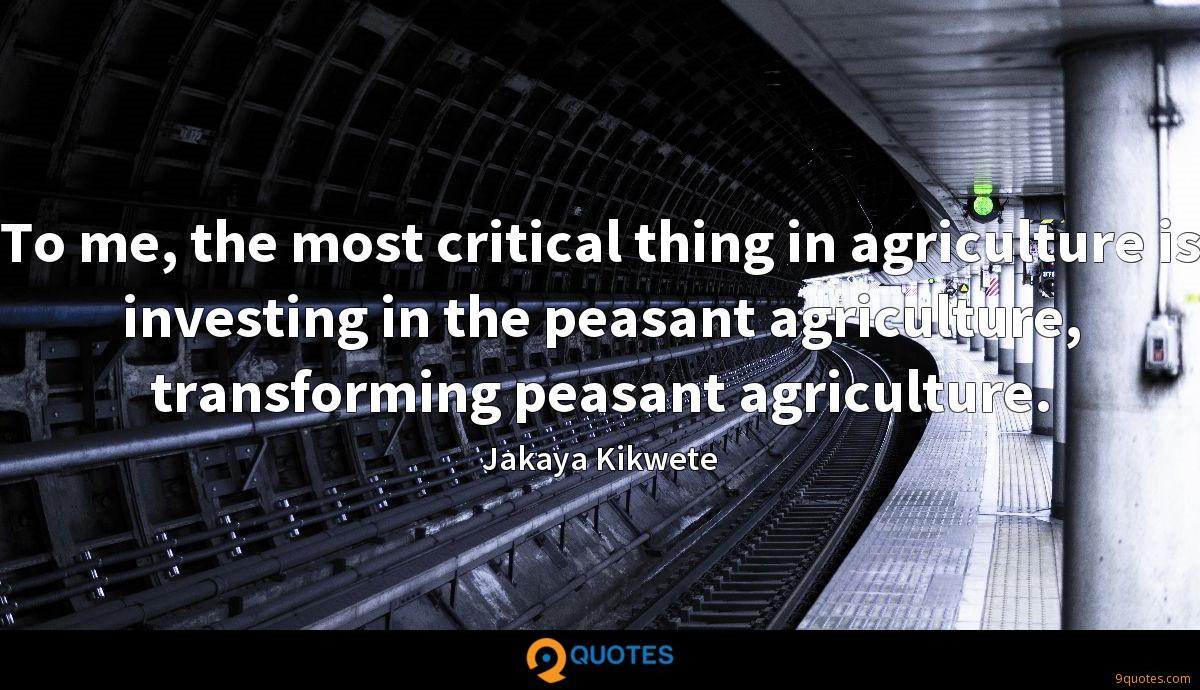 To me, the most critical thing in agriculture is investing in the peasant agriculture, transforming peasant agriculture.