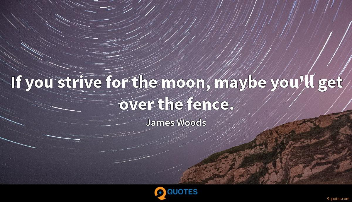 If you strive for the moon, maybe you'll get over the fence.