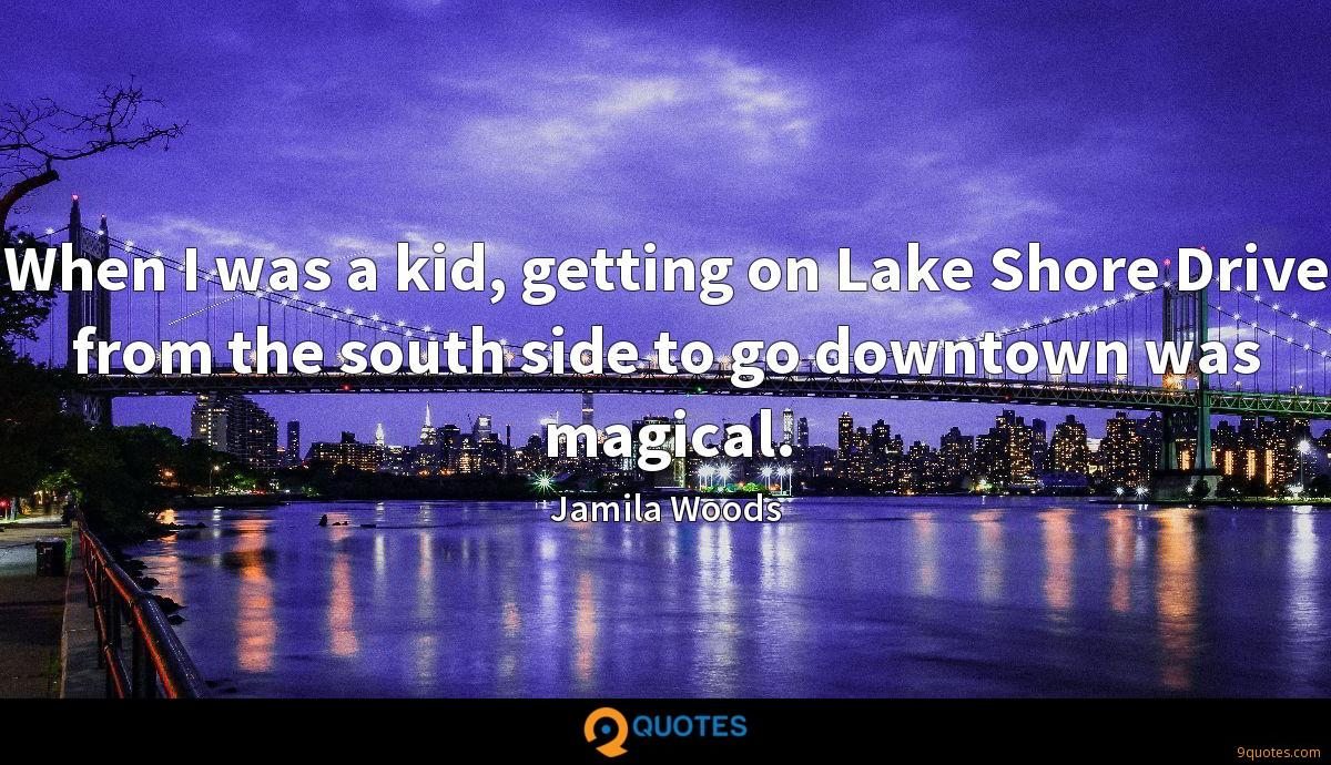 When I was a kid, getting on Lake Shore Drive from the south side to go downtown was magical.