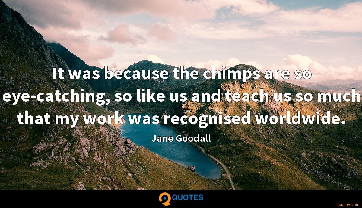 It was because the chimps are so eye-catching, so like us and teach us so much that my work was recognised worldwide.
