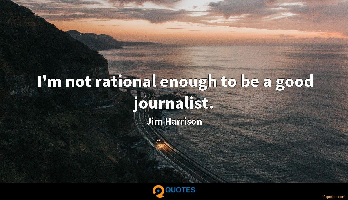 I'm not rational enough to be a good journalist.