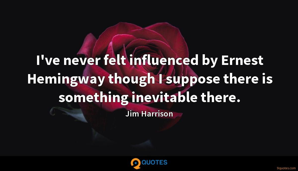 I've never felt influenced by Ernest Hemingway though I suppose there is something inevitable there.