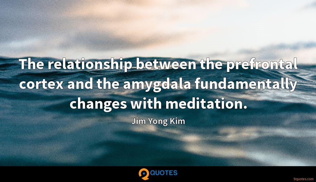 The relationship between the prefrontal cortex and the amygdala fundamentally changes with meditation.