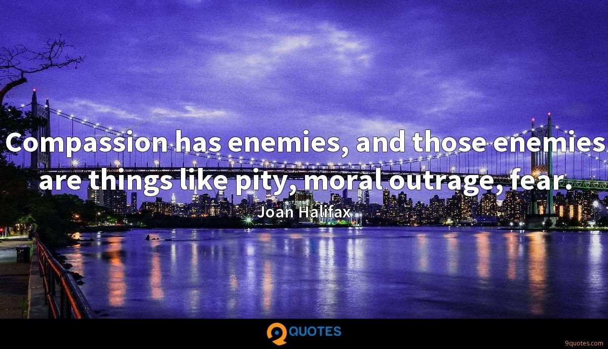 Compassion has enemies, and those enemies are things like pity, moral outrage, fear.