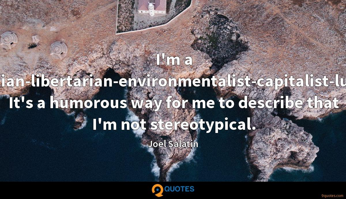 I'm a Christian-libertarian-environmentalist-capitalist-lunatic. It's a humorous way for me to describe that I'm not stereotypical.