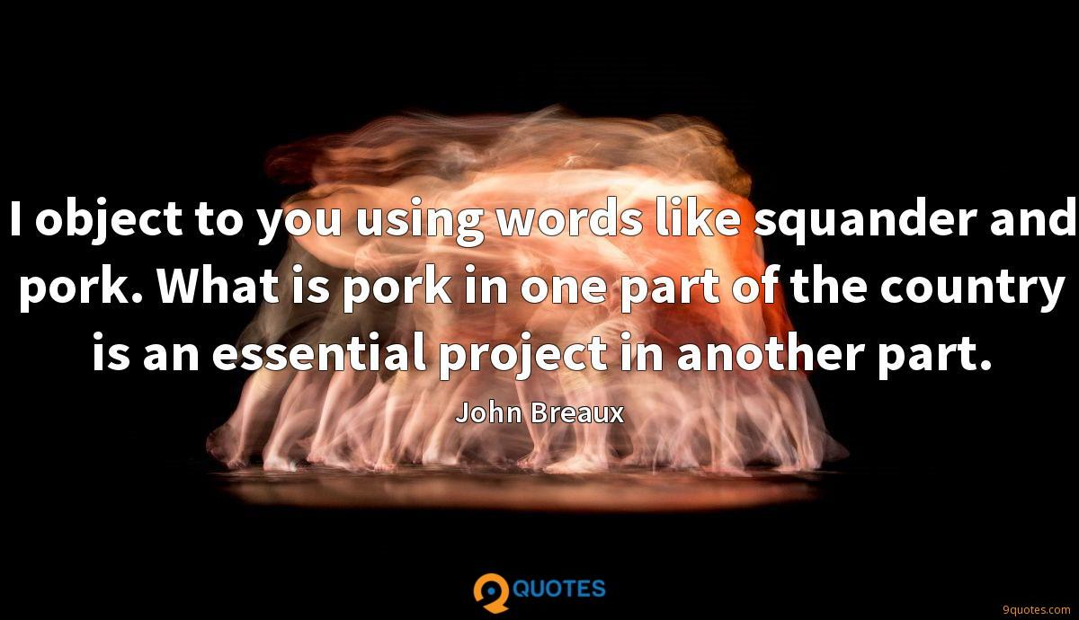 I object to you using words like squander and pork. What is pork in one part of the country is an essential project in another part.