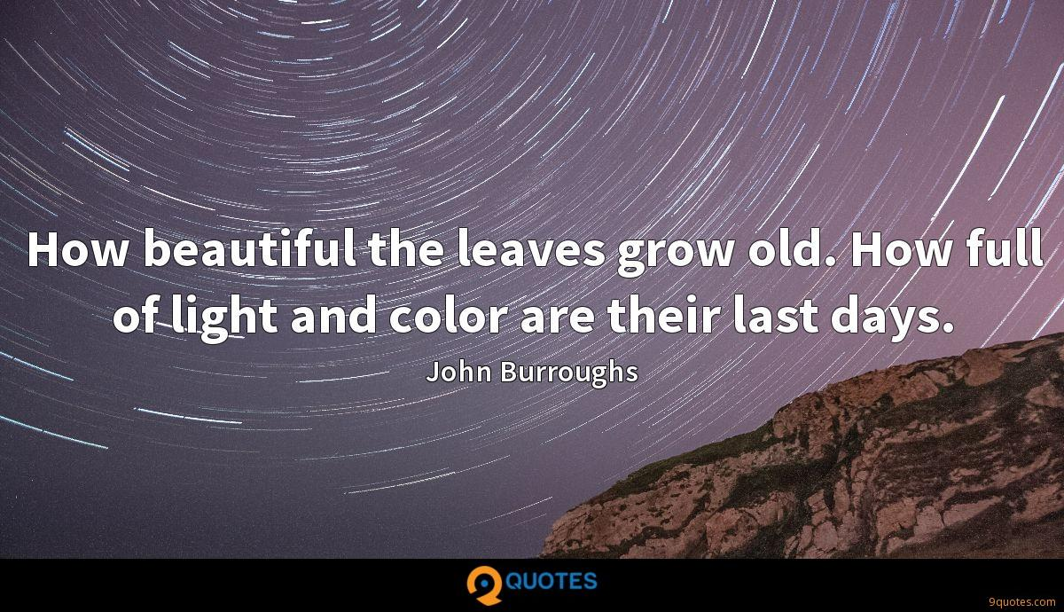 How beautiful the leaves grow old. How full of light and color are their last days.