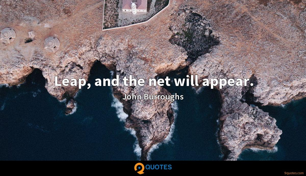 Leap, and the net will appear.