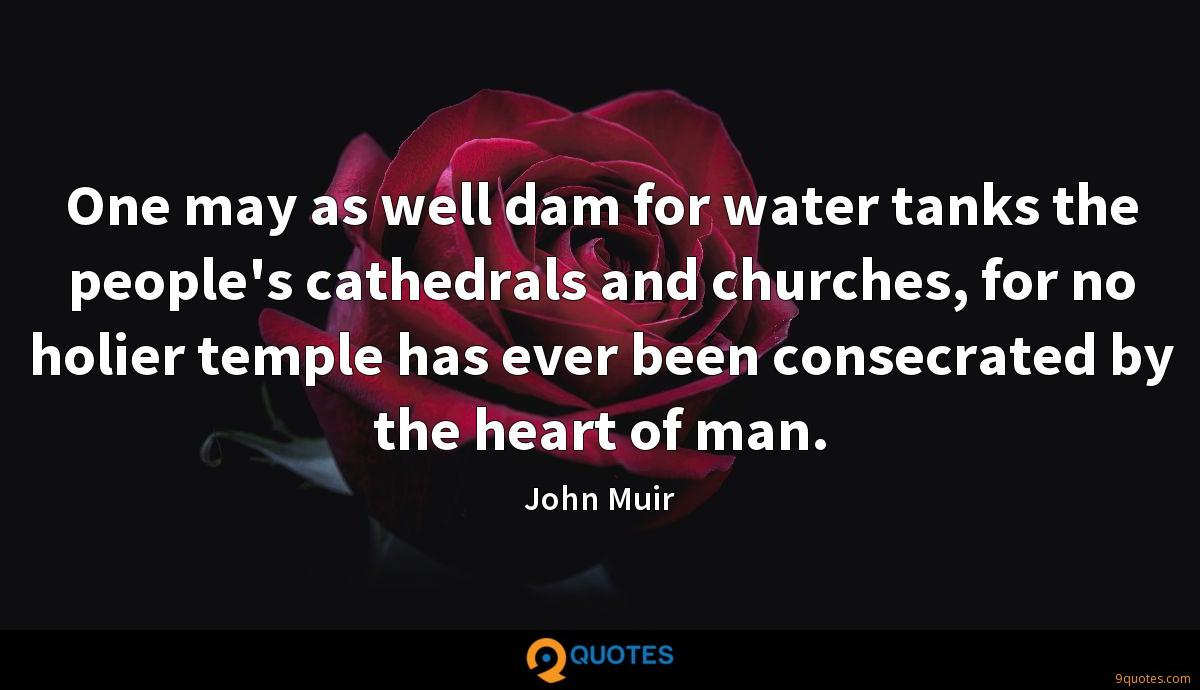 One may as well dam for water tanks the people's cathedrals and churches, for no holier temple has ever been consecrated by the heart of man.