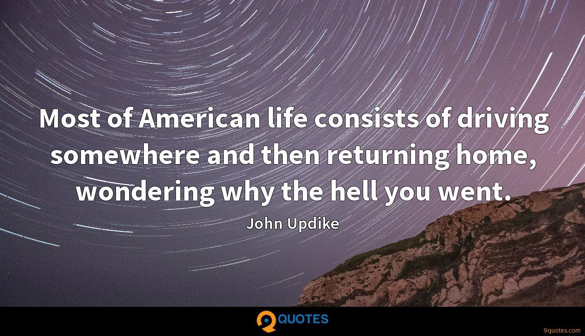 Most of American life consists of driving somewhere and then returning home, wondering why the hell you went.