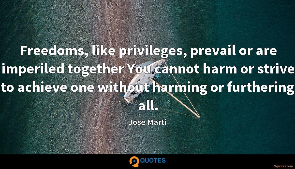 Freedoms, like privileges, prevail or are imperiled together You cannot harm or strive to achieve one without harming or furthering all.