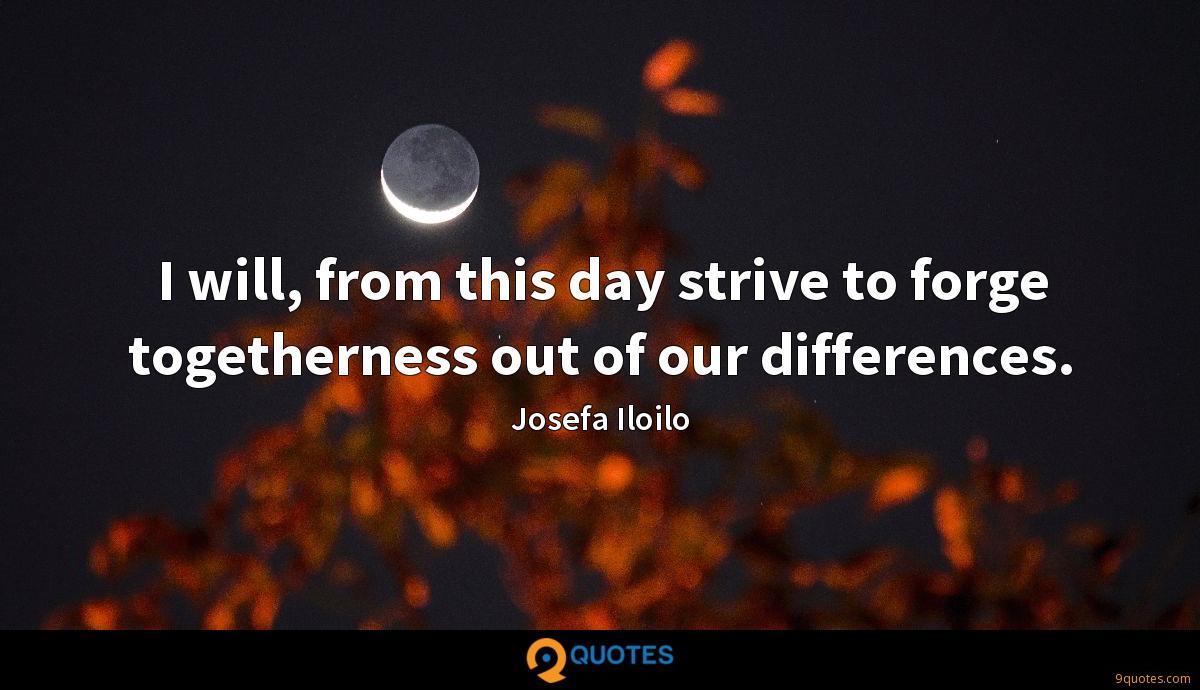 I will, from this day strive to forge togetherness out of our differences.