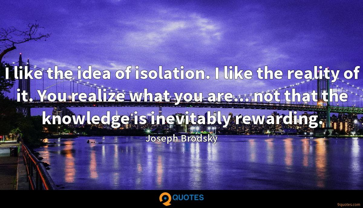 I like the idea of isolation. I like the reality of it. You realize what you are... not that the knowledge is inevitably rewarding.