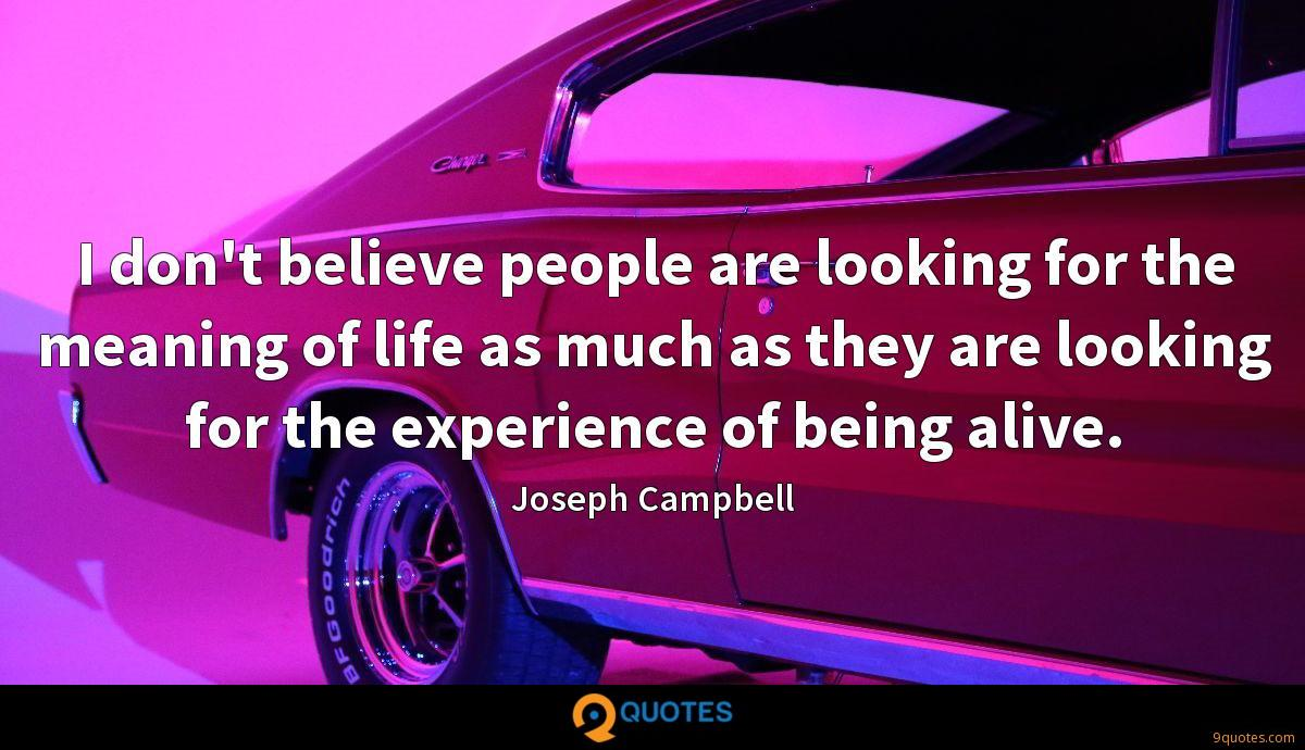 I don't believe people are looking for the meaning of life as much as they are looking for the experience of being alive.