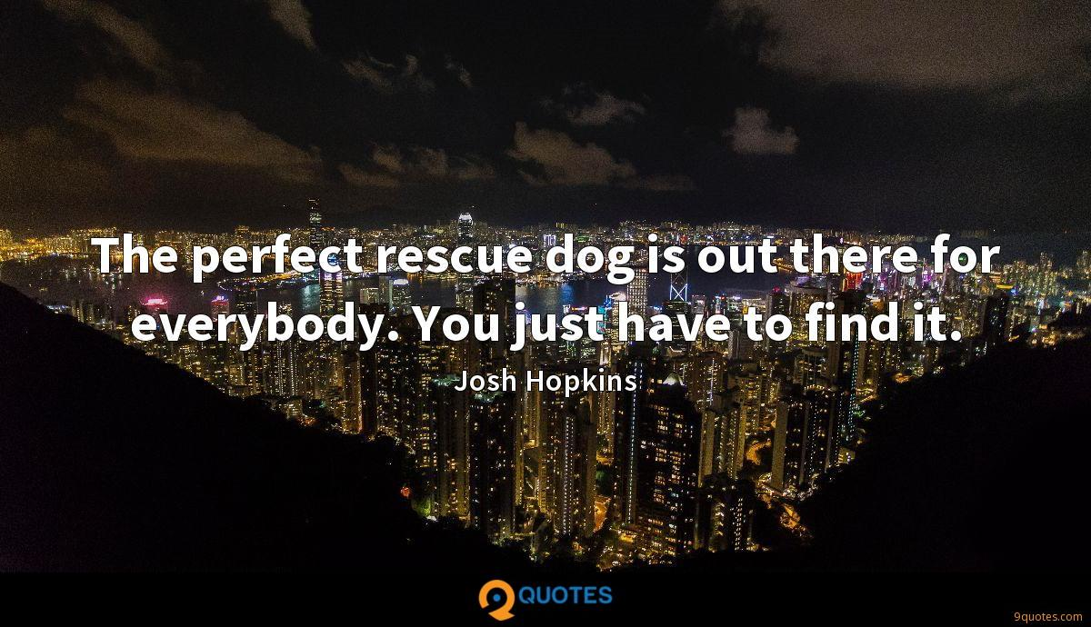 The perfect rescue dog is out there for everybody. You just have to find it.