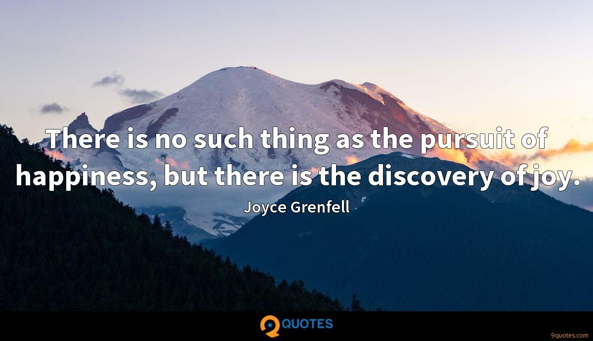 There is no such thing as the pursuit of happiness, but there is the discovery of joy.
