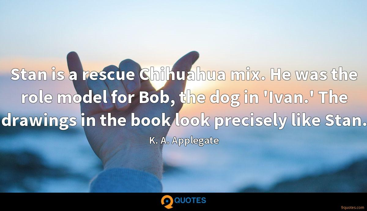 Stan is a rescue Chihuahua mix. He was the role model for Bob, the dog in 'Ivan.' The drawings in the book look precisely like Stan.