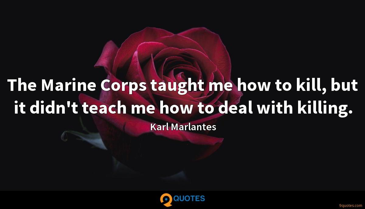 The Marine Corps taught me how to kill, but it didn't teach me how to deal with killing.