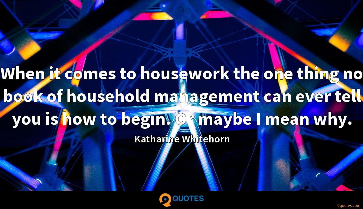 When it comes to housework the one thing no book of household management can ever tell you is how to begin. Or maybe I mean why.
