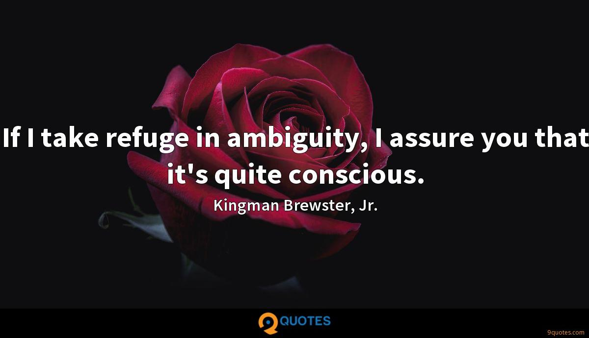 If I take refuge in ambiguity, I assure you that it's quite conscious.