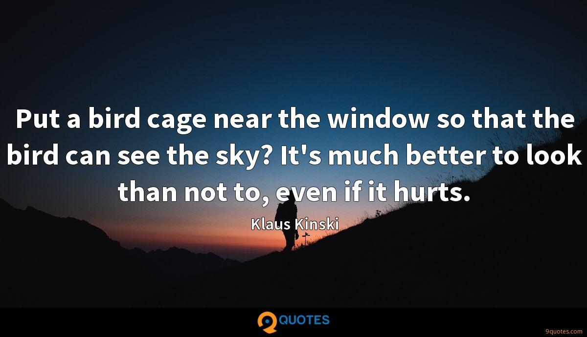 Put a bird cage near the window so that the bird can see the sky? It's much better to look than not to, even if it hurts.