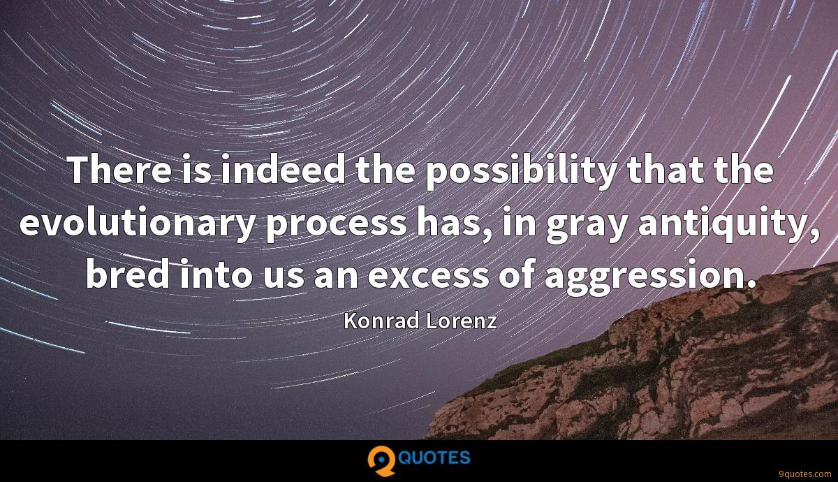There is indeed the possibility that the evolutionary process has, in gray antiquity, bred into us an excess of aggression.