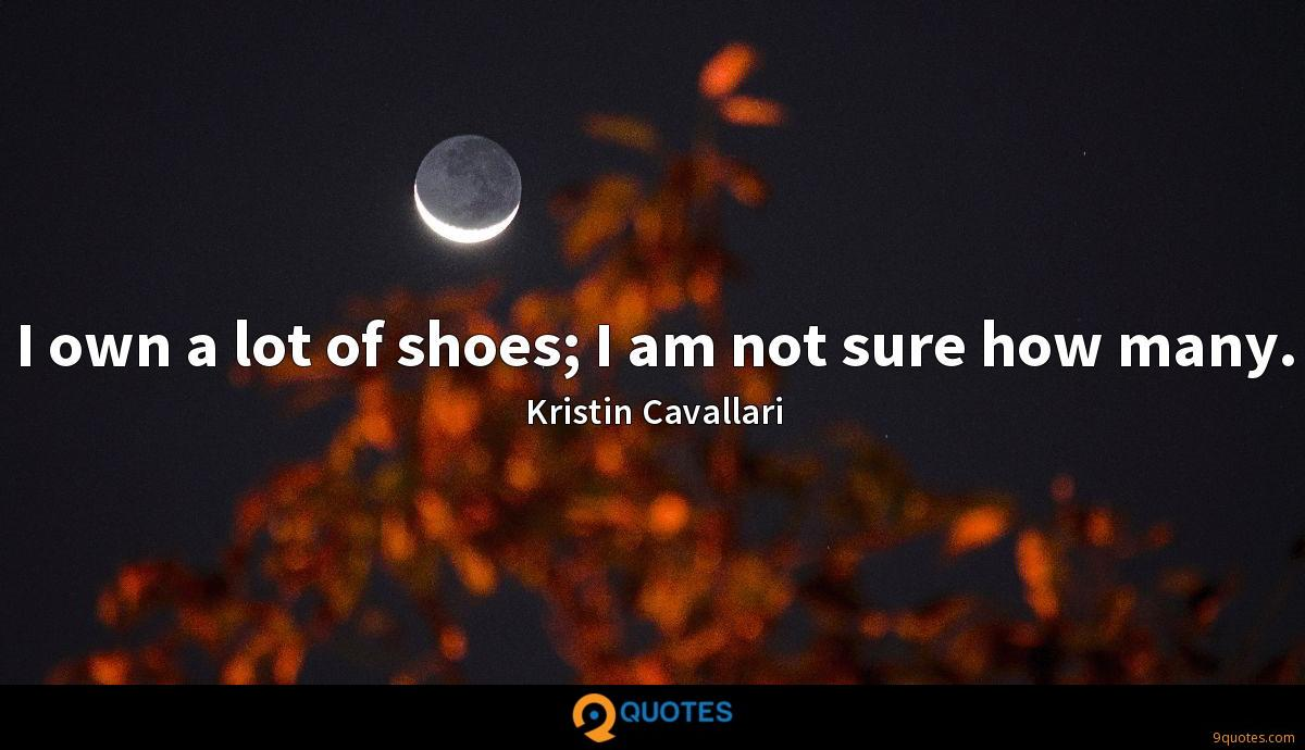 I own a lot of shoes; I am not sure how many.