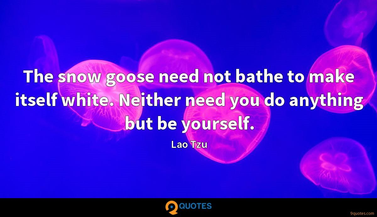 The snow goose need not bathe to make itself white. Neither need you do anything but be yourself.