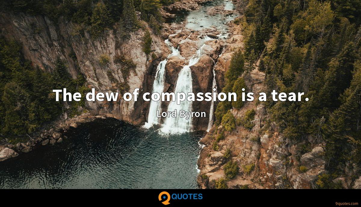 The dew of compassion is a tear.