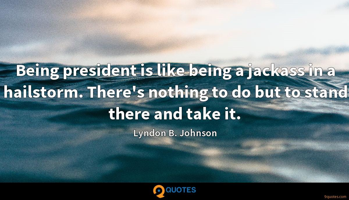 Being president is like being a jackass in a hailstorm. There's nothing to do but to stand there and take it.