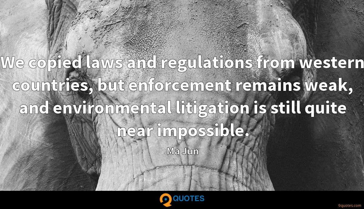 We copied laws and regulations from western countries, but enforcement remains weak, and environmental litigation is still quite near impossible.