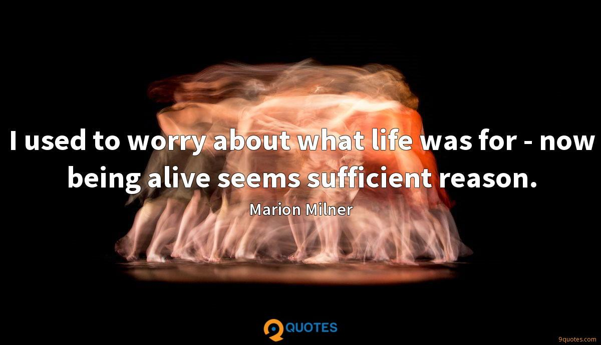 I used to worry about what life was for - now being alive seems sufficient reason.
