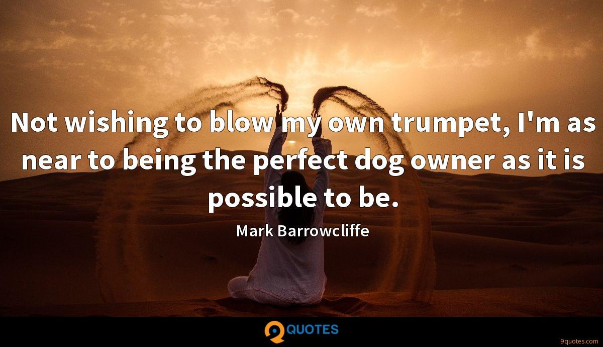 Not wishing to blow my own trumpet, I'm as near to being the perfect dog owner as it is possible to be.