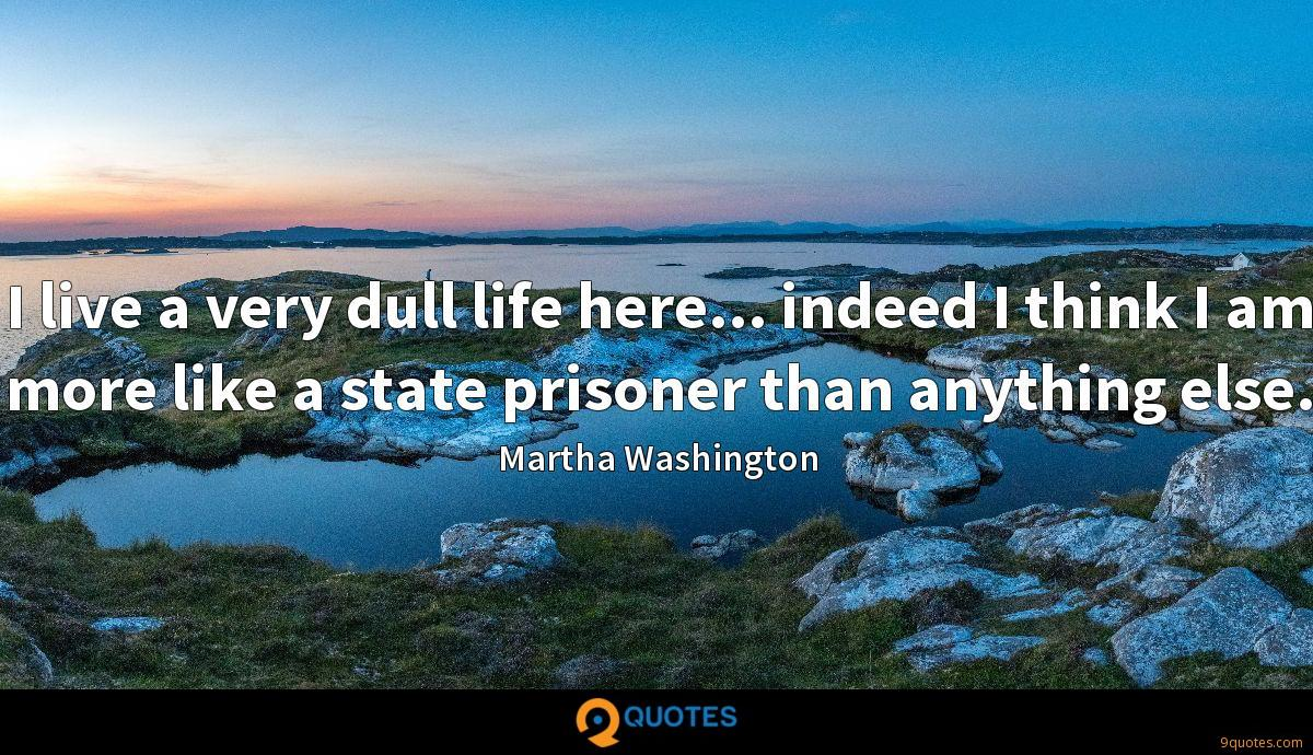 I live a very dull life here... indeed I think I am more like a state prisoner than anything else.
