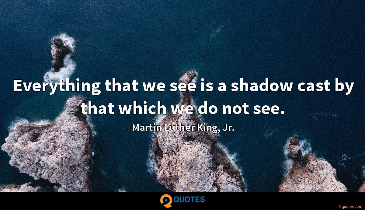 Everything that we see is a shadow cast by that which we do not see.