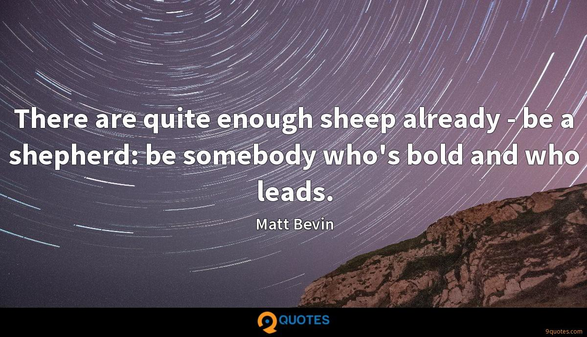 There are quite enough sheep already - be a shepherd: be somebody who's bold and who leads.