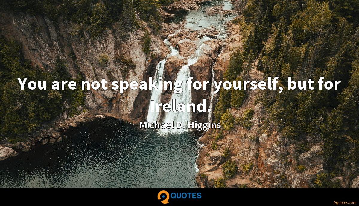 You are not speaking for yourself, but for Ireland.