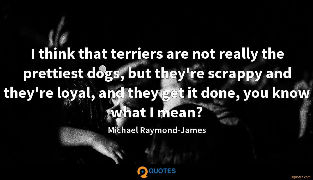 I think that terriers are not really the prettiest dogs, but they're scrappy and they're loyal, and they get it done, you know what I mean?